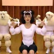Poodle Exercise with Humans
