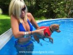 Tommy Chihuahua's Swimming Lesson